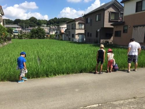 田名探検⑩